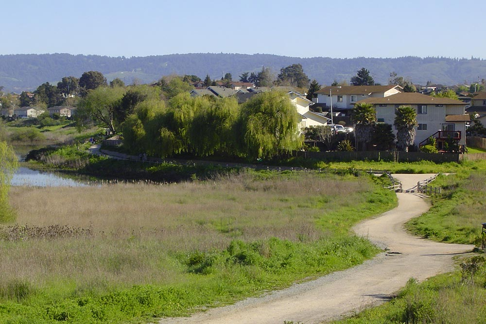Harkings road made by Don Chapin in Monterey County
